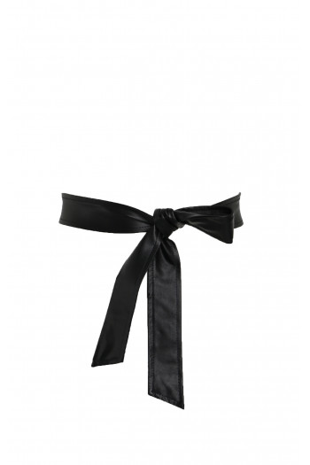 Beautiful black belt